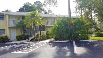 Bonita Springs Condo/Townhouse For Sale: 28100 Pine Haven Way #6