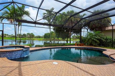 Estero Single Family Home Pending With Contingencies: 22310 Banyan Hideaway Dr