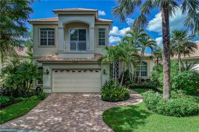 Bonita Springs Single Family Home For Sale: 27528 Riverbank Dr