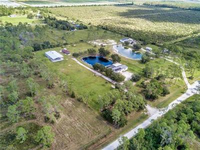 Estero Single Family Home For Sale: 18405 Dykes Rd
