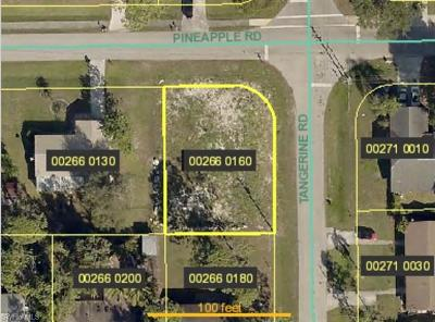 Residential Lots & Land For Sale: 9224 Pineapple Rd