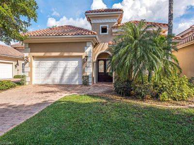 Estero Single Family Home For Sale: 22171 Natures Cove Ct