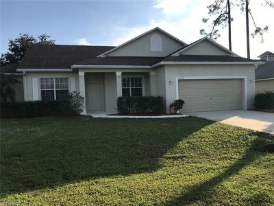 Bonita Springs Single Family Home For Sale: 10650 Landau Ln