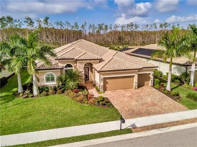 Estero Single Family Home For Sale: 20126 Eagle Stone Dr
