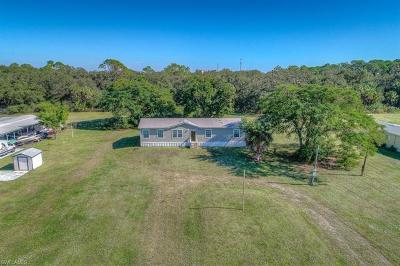 Estero Single Family Home For Sale: 21059 See See St