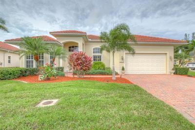 Bonita Springs Single Family Home For Sale: 10205 Avonleigh Dr