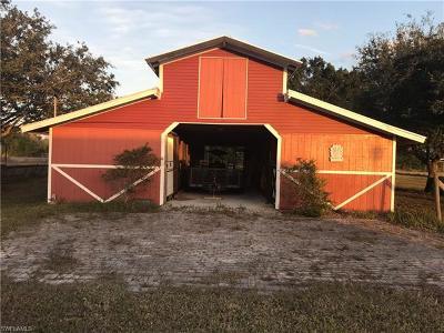 Bonita Springs Single Family Home For Sale: 12051 Suncrest Ln