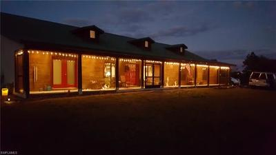 Punta Gorda Single Family Home For Sale: 30720 Washington Loop Rd