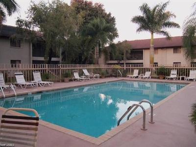 Lehigh Acres Condo/Townhouse For Sale: 10 Beth Stacey Blvd #113