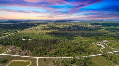 Estero Residential Lots & Land For Sale: 19800 Corkscrew Estates Ct