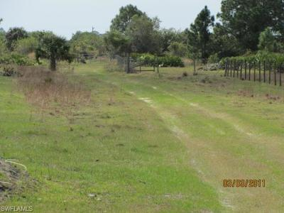 Estero Residential Lots & Land For Sale: 21351 Hidden Woods Trl