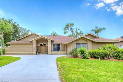 Fort Myers Single Family Home For Sale: 19340 N Pine Run Ln
