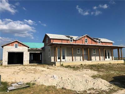 Punta Gorda Single Family Home For Sale: 17205 Bullhorn Cir