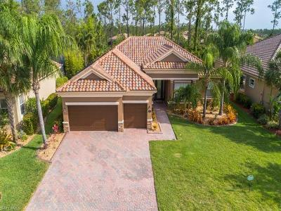 Estero Single Family Home For Sale: 20916 Torre Del Lago St