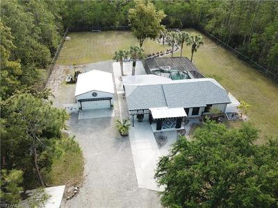 Bonita Springs Single Family Home For Sale: 24199 Claire St