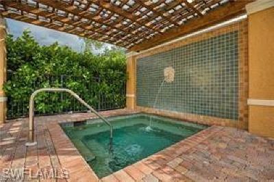 Bonita Springs Rental For Rent: 8735 River Homes Ln #6101