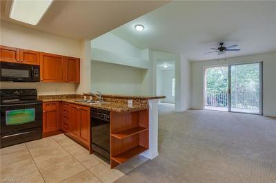 Estero FL Condo/Townhouse For Sale: $209,000