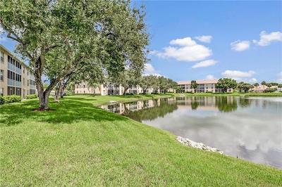 Naples FL Condo/Townhouse For Sale: $238,000