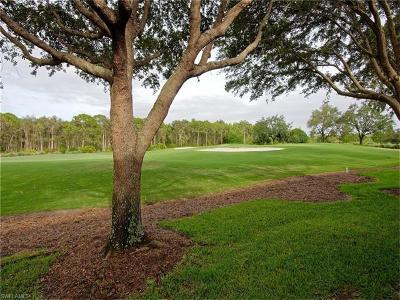 Estero FL Condo/Townhouse For Sale: $310,000