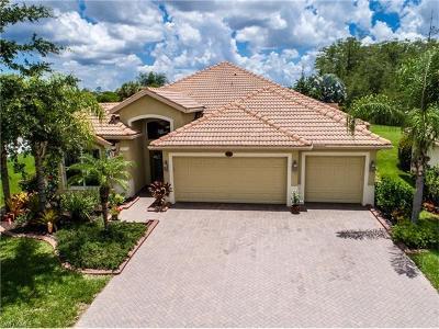 Estero Single Family Home For Sale: 13899 Farnese Dr