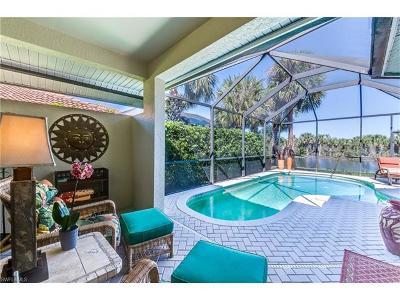 Estero Single Family Home For Sale: 10933 Salerno Bay Rd