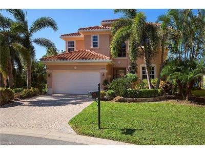 Estero Single Family Home For Sale: 19554 Casa Verona Ct