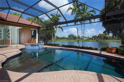 Estero Single Family Home For Sale: 22310 Banyan Hideaway Dr