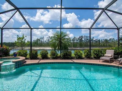 Estero Single Family Home For Sale: 21228 Bella Terra Blvd