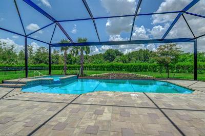 Estero Single Family Home For Sale: 20529 Shady Glen Ct