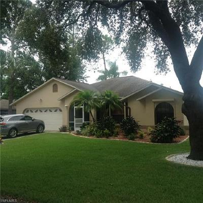 Fort Myers Single Family Home For Sale: 19292 Cypress View Dr