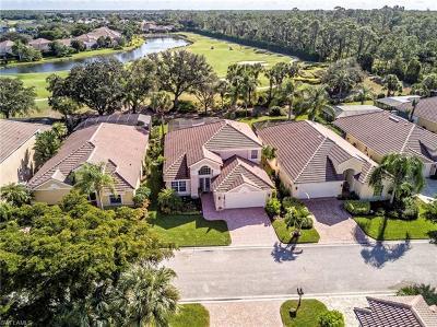 Estero Single Family Home For Sale: 23705 Stonyriver Pl