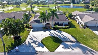 Bonita Springs Single Family Home For Sale: 9863 Treasure Cay Ln
