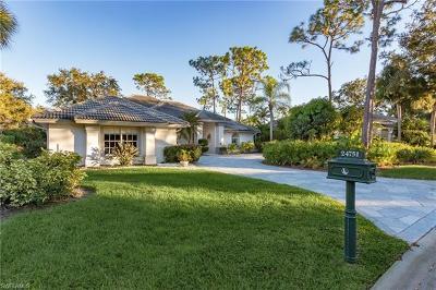 Bonita Springs Single Family Home For Sale: 24751 Bay Bean Ct