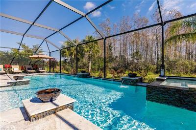 Fort Myers Single Family Home For Sale: 12827 Guildford Ter