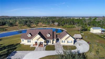 Estero Single Family Home For Sale: 19050 Corkscrew Estates Ct