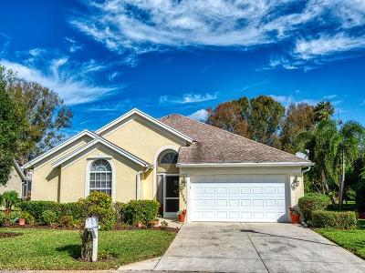 Estero Single Family Home For Sale: 22049 Seashore Cir