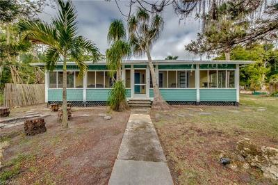 Bonita Springs Single Family Home For Sale: 27330 Matheson Ave
