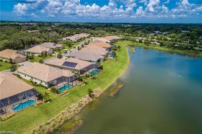 Estero Single Family Home For Sale: 21297 Estero Palm Way