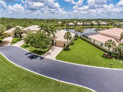 Estero Single Family Home For Sale: 23041 Tree Crest Ct