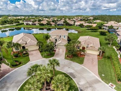 Estero Single Family Home For Sale: 13754 Plati Ct