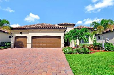 Bonita Springs Single Family Home For Sale: 28124 Wicklow Ct
