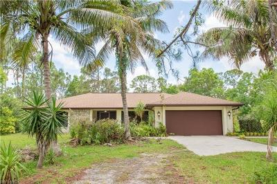 Fort Myers Single Family Home For Sale: 11530 Morgan Hill Rd