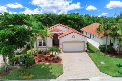 Estero Single Family Home For Sale: 9134 Springview Loop