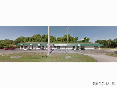 Homosassa, Dunnellon Commercial For Sale: 3538 S Suncoast Boulevard