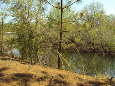 Crystal River Residential Lots & Land For Sale: 10301 W Pamondeho Circle