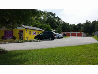 Citrus County Commercial For Sale: 2089 N Lecanto Highway