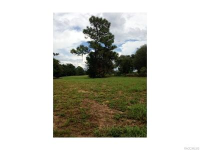 Black Diamond Ranch Residential Lots & Land For Sale: 3641 W Treyburn Path