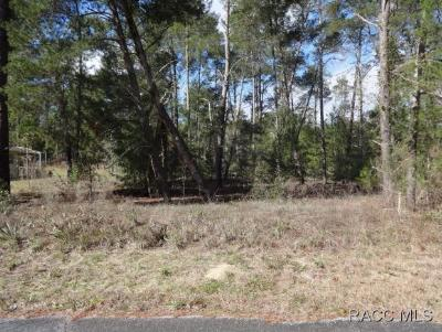 Homosassa Residential Lots & Land For Sale: 66 Grass Street