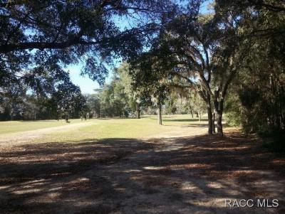 Citrus Springs Residential Lots & Land For Sale: 8438 N Pinnacle Drive