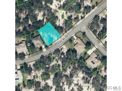 Residential Lots & Land For Sale: 46 Black Willow Street